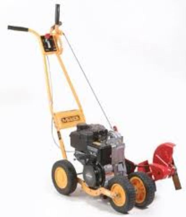Where to find LAWN EDGER in Grapevine